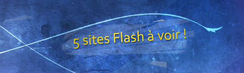5 Sites flash à voir
