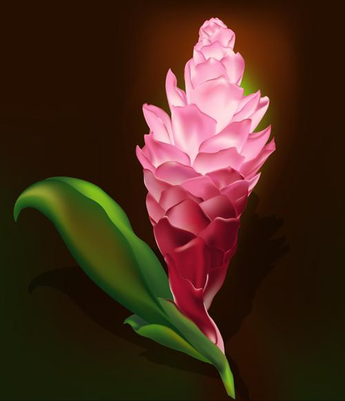 25 tutoriels pour Photoshop et Illustrator