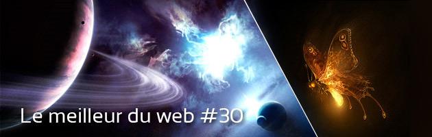 art_web301.jpg