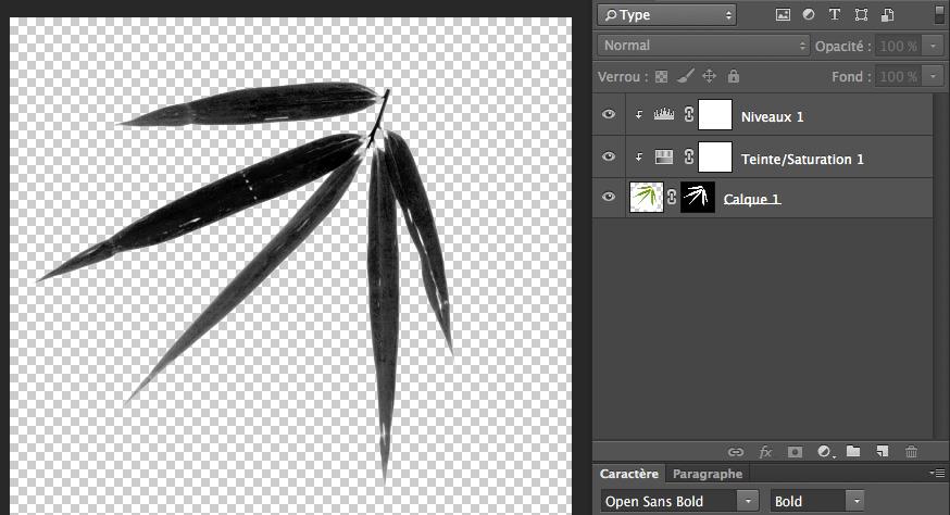 Créer votre brush photoshop