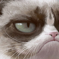 Speed painting vidéo de The Grumpy Cat de Spartan