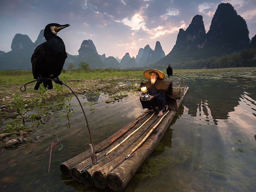 Le top 20 des photos de National Geographic 2015