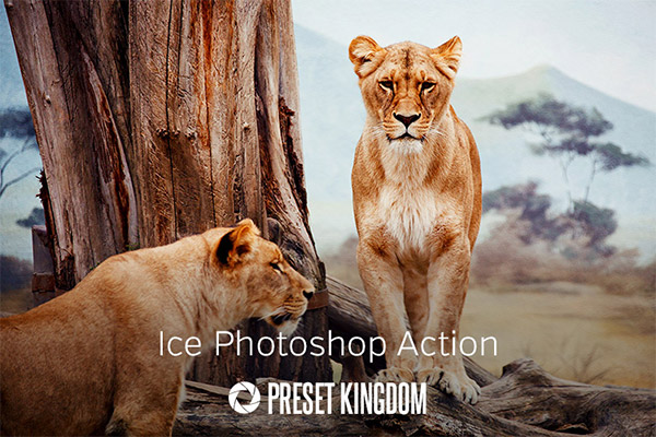 35 Actions Photoshop gratuites