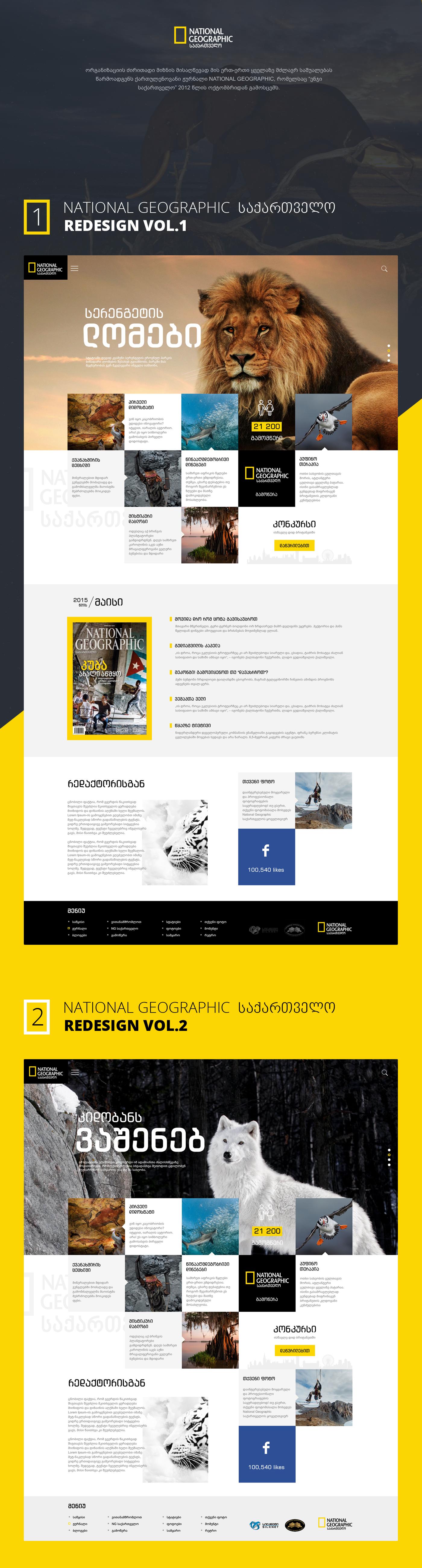 Giga Tamarasvili , talentueux Webdesigner et Designer d'interface #34