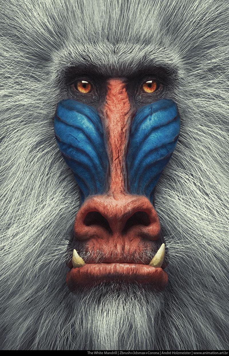 30 animaux en 3D