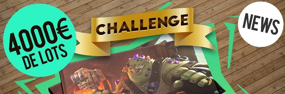 Challenge DPS #10 : ARTBOOK, 4000€ DE LOTS, COUVERTURE