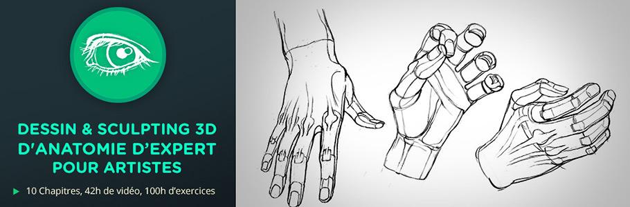 Nouvelle formation : Dessin & sculpting 3D d'anatomie d'expert pour artistes