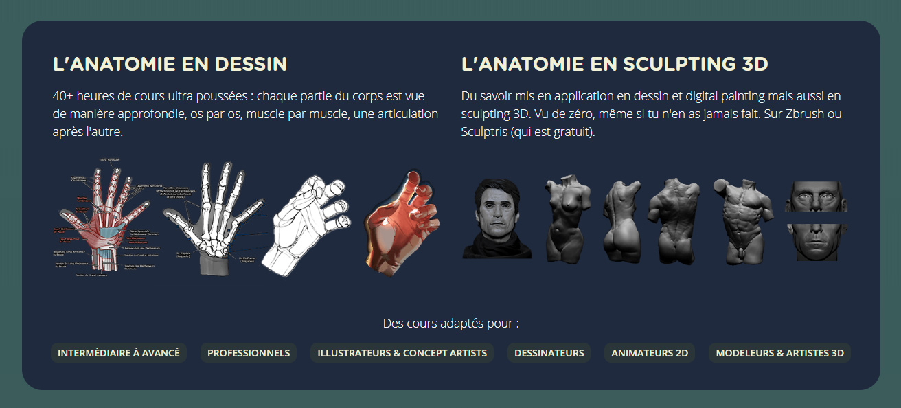 formation_dessin_anatomie_personnages4