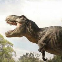 Interview de Gaëlle Seguillon : concept artist Jurassic World, Ready Player One...