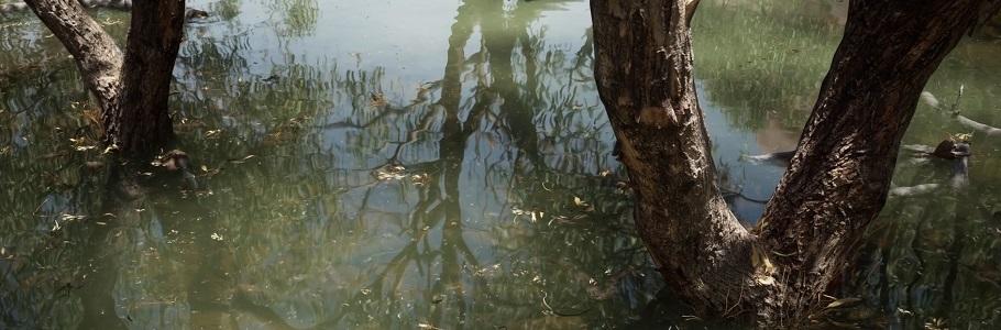 Unreal Engine Australie